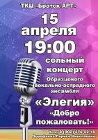 Сольный концерт вокально-эстрадного ансамбля «Элегия»